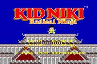 Video Game: Kid Niki: Radical Ninja