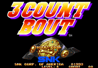 Video Game: 3 Count Bout