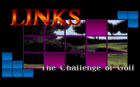 Video Game: Links The Challenge Of Golf