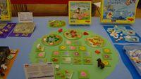 Board Game: Auf die Weide, fertig, los!