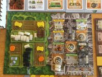 Caverna - Solo end game player board pics | RPGGeek