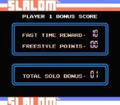 Video Game: Slalom