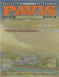 RPG Item: Pavis