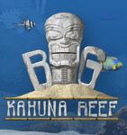 Video Game: Big Kahuna Reef