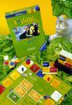 Board Game: Kopfsalat