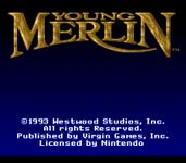 Video Game: Young Merlin