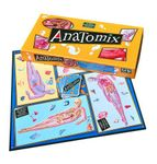 Board Game: Anatomix