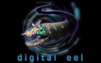Video Game Publisher: Digital Eel