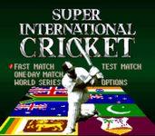 Video Game: Super International Cricket
