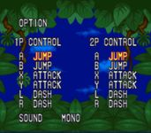 Video Game: Joe and Mac 2: Lost in the Tropics