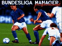 Video Game: Bundesliga Manager Professional