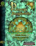 RPG Item: Player Paraphernalia #021: Sword Saint (Cavalier Archetype)