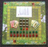 Board Game: Pasterze