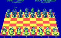 Video Game: The Chessmaster 2000