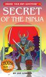 RPG Item: Secret of the Ninja
