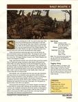 RPG Item: Salt Route
