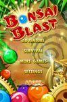 Video Game: Bonsai Blast