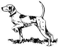 Character: Dog (Generic)