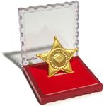 Board Game Accessory: Dice Town: Metal Sheriff's Badge