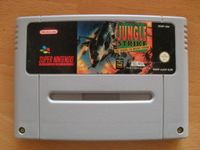Video Game: Jungle Strike