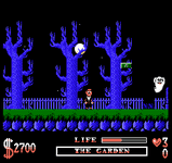 Video Game: The Addams Family (NES)