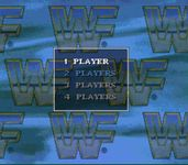 Video Game: WWF Raw