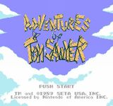 Video Game: The Adventures of Tom Sawyer