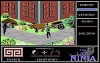 Video Game: The Last Ninja