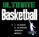 Video Game: Ultimate Basketball