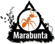 Board Game Publisher: Marabunta