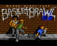 Video Game: BasketBrawl