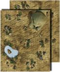 RPG Item: GameMastery Flip-Mat: Desert