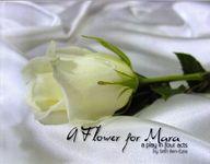 RPG Item: A Flower for Mara