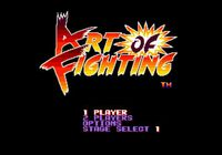 Video Game: Art of Fighting