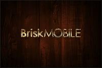 Video Game Publisher: Brisk Mobile