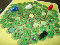 Board Game: Sugar Gliders