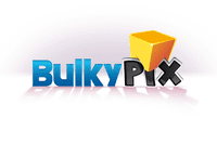 Video Game Publisher: Bulkypix