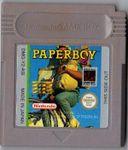 Video Game: Paperboy 2