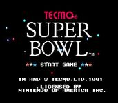 Video Game: Tecmo Super Bowl
