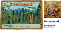 Board Game: Adventure of D