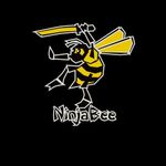 Video Game Publisher: NinjaBee