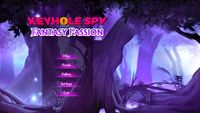 Video Game: Keyhole Spy: Fantasy Passion