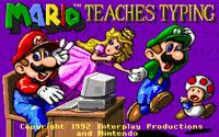 Video Game: Mario Teaches Typing
