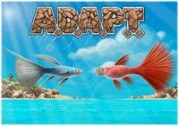Board Game: A.D.A.P.T.