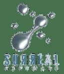 Video Game Developer: Surreal Software