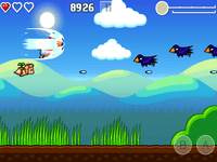 Video Game: Flying Hamster