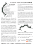 RPG Item: The Ecology of the Deep Dark Cave Worm