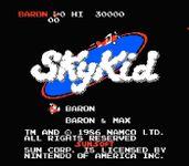 Video Game: Sky Kid