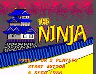 Video Game: The Ninja