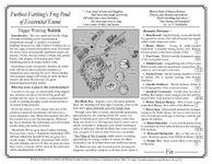 RPG Item: Furthest Farthing's Frog Pond of Existential Ennui